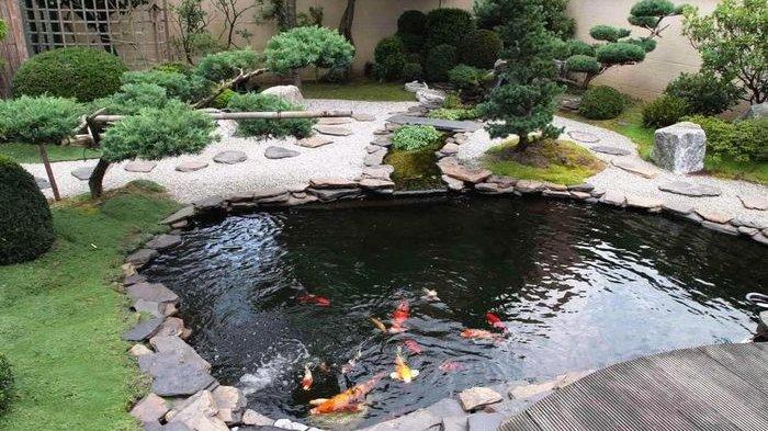 Jasa Pembuatan Taman Kolam Ikan